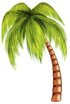 Essay On Coconut Tree In Malayalam